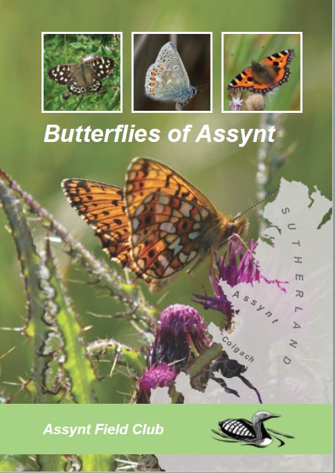 cover of Butterflies of Assynt