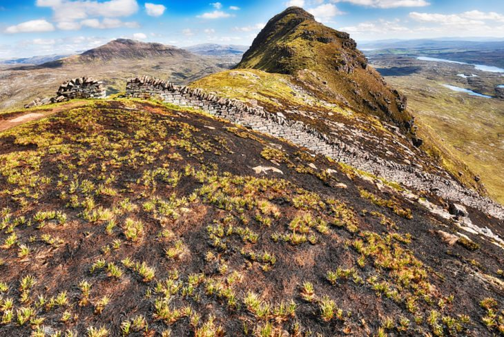 Green shoots appear amongst the incinerated vegetation on Suilven. Photo © Chris Puddephatt