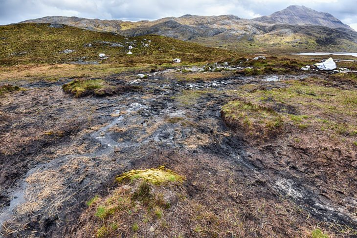 Up to 30m wide the path was a wide swathe of trampled peat in places. Photo © Chris Puddephatt.